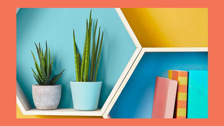 Cara Menata Rumah Kontrakan Dekor Ulang Ruangan
